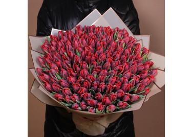 Букет из 151 тюльпана