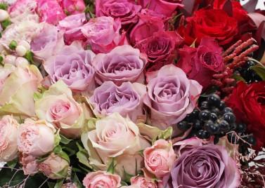 Розовое Танго