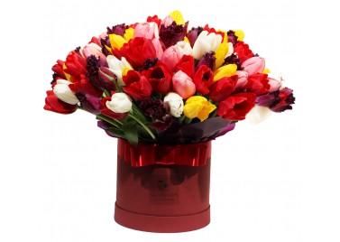 151 тюльпан в шляпной коробке
