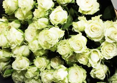 Букет из белой Розы Спрей