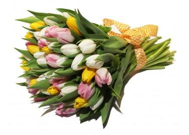 Нежный Микс из 35 тюльпанов