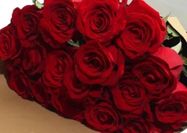 Букет из 15 роз 1м